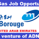 Latest Job Vacancies in Borouge 2019 | Any Graduate/ Any Degree / Diploma / ITI |Btech | MBA | +2 | Post Graduates  | UAE,Singapore,UK,USA,Worldwide